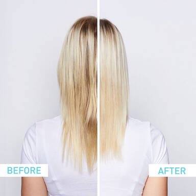 Bold Best Blonde Product Set